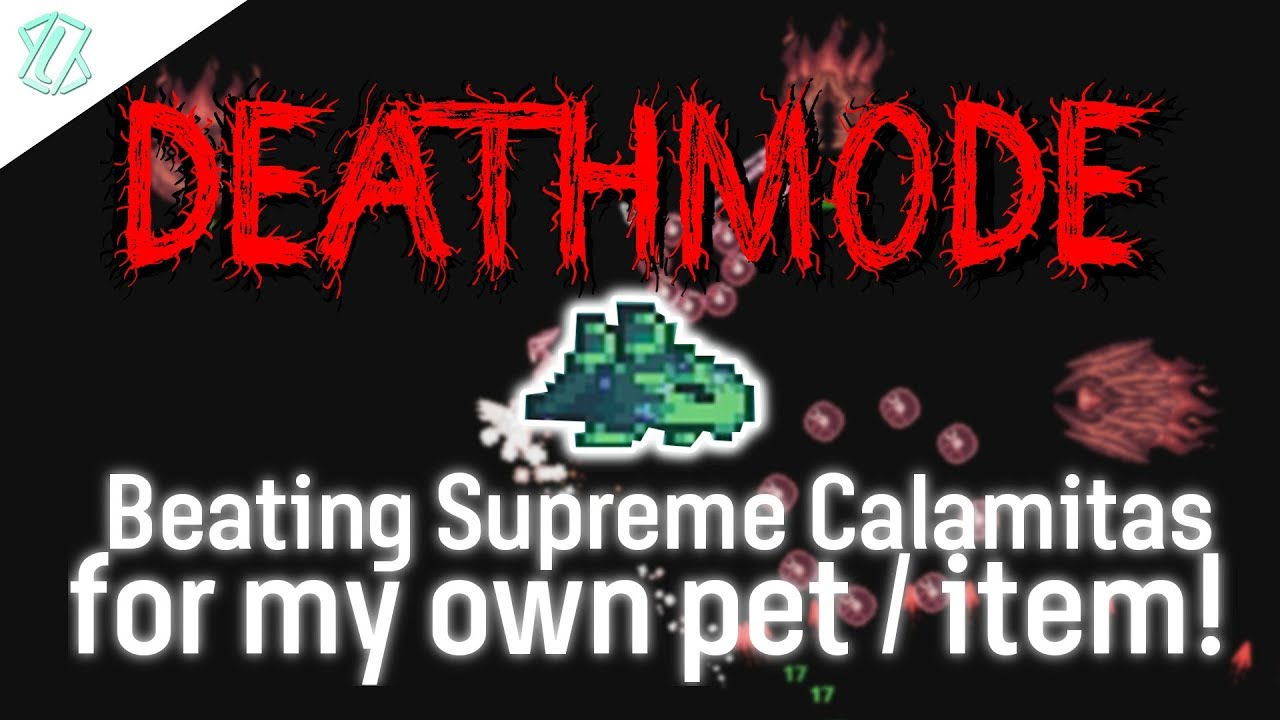 Beating Deathmode Supreme Calamitas For My Own Pet Item Terraria Modded 1 3 5 Youtube