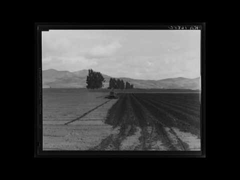 Icelandic American Folk Music (CA): Rimur