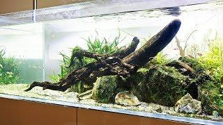 Aquascaper 1200 - Cheerio to my favourite aquascape?