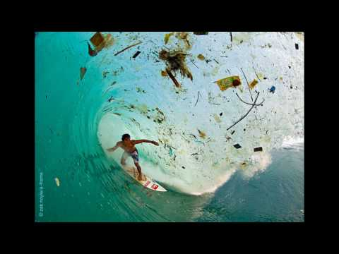 Marine pollution - causes, effects and control measures: marine pollution (env)