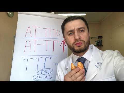 Высокие антитела к щитовидной железе (АТ-ТПО) при нормальном ТТГ