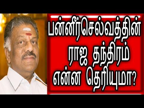 பன்னீர்செல்வத்தின் ராஜ தந்திரம் |Political News |Tamil News|Flash News