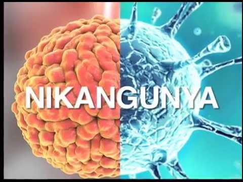 La Última Mirada News: un nuevo virus en Nicaragua