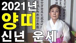 2021년 신축년 양띠 신년운세 ♦️ 서울용한점집 신점잘보는곳
