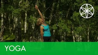 Yoga for Weight Loss with Colleen Saidman - Introduction | Yoga | Gaiam