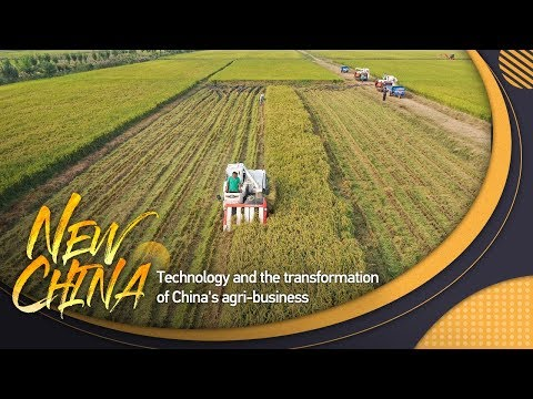 : Technology and the transformation of China&39;s agri-business CGTN全景中国之现代农业