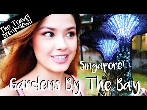 SINGAPORE | Eating & Gardens By The Bay | The Travel Breakdown