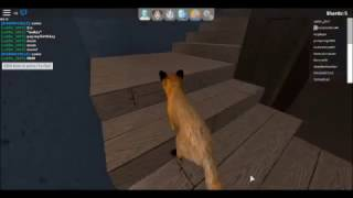 lost fox mum (a sad roblox story) (part 1)