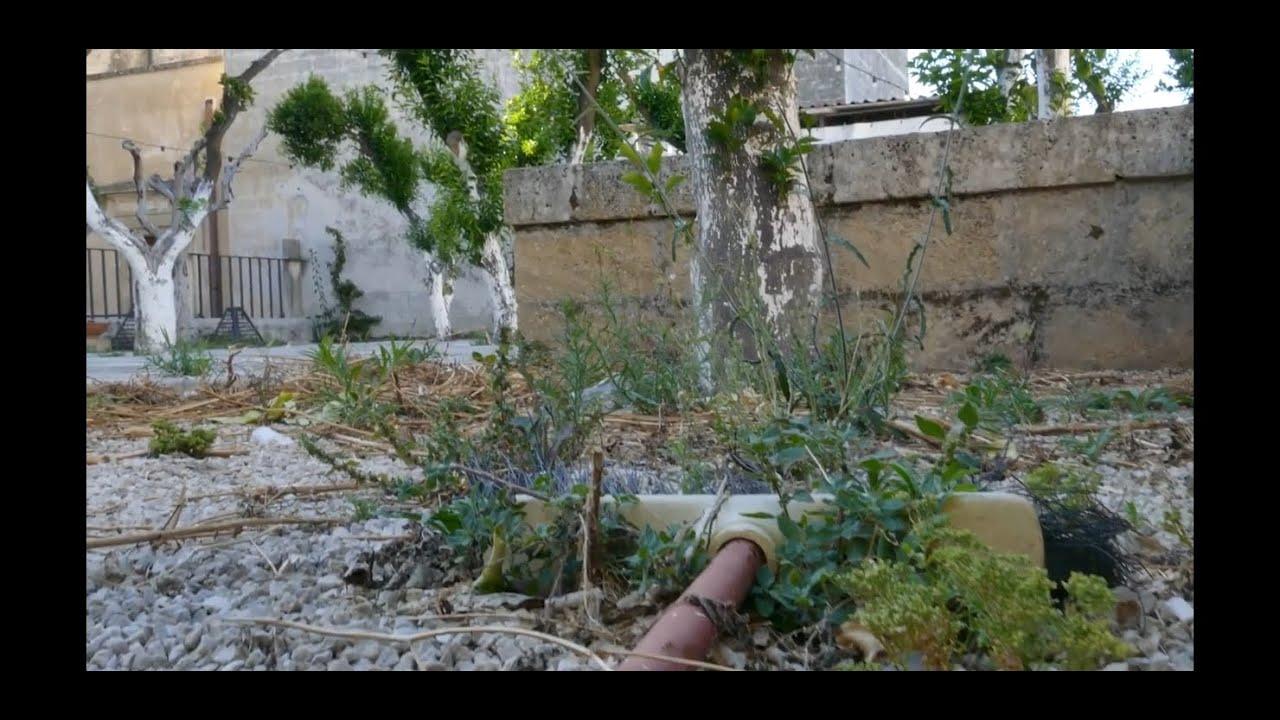 deVASTEtion di Poggiardo 2020: Salento e turismo culturale, video denuncia