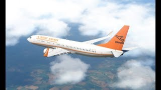 Live: Zibo Livery Painting | Digital Airlines