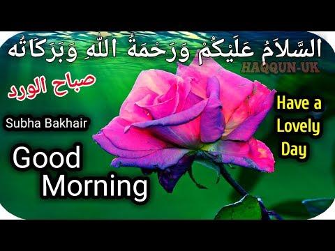 💜Subha Bakhair Status|Good Morning Status, Wishes,Greetings,Quotes|صباح الورد