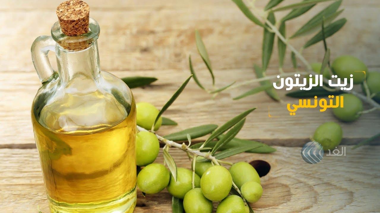 تقرير تونس من أكبر الدول المصدرة لزيت الزيتون في العالم Youtube