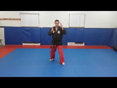 Intro to Japanese Jujitsu. Yellow belt, Side thrust kick lead and rear leg