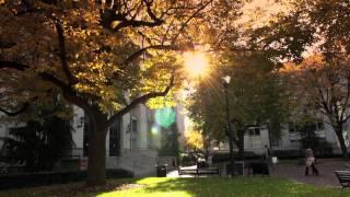 Northeastern University in the Fall