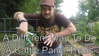 Not Another Cattle Panel Trellis Video