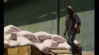 MaximsNewsNetwork: KENYA RICE FARMING