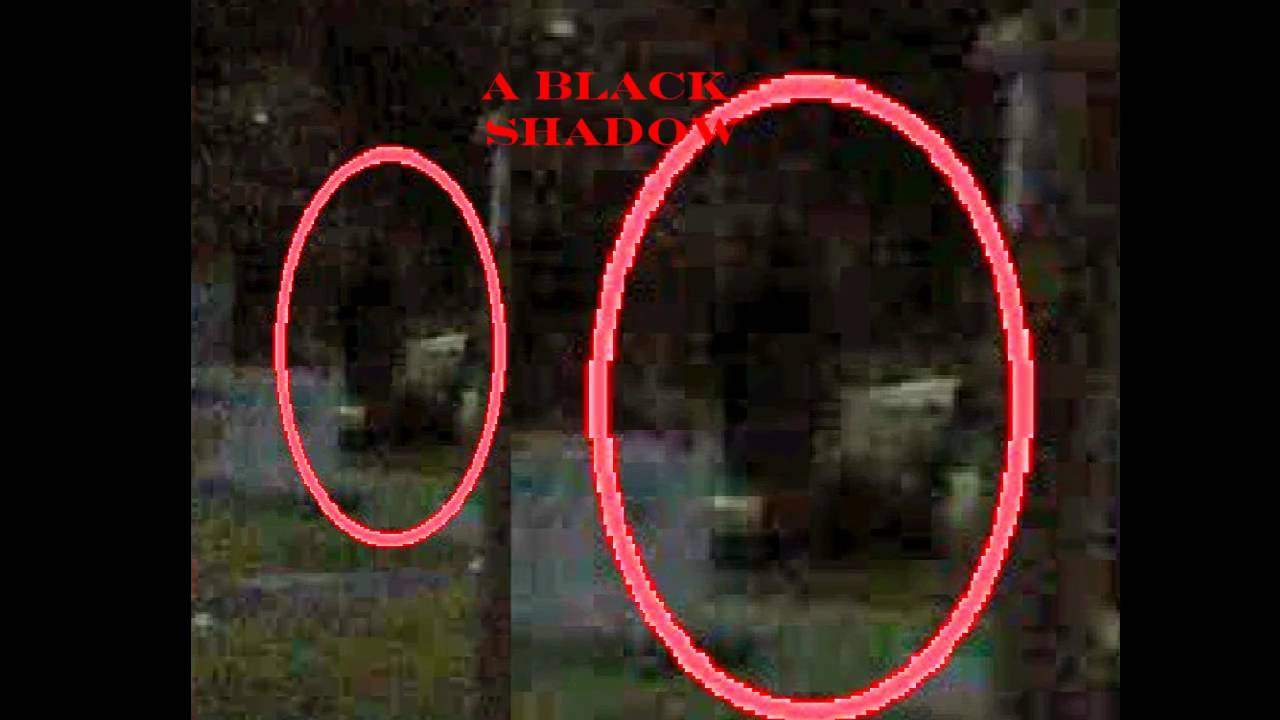 Pictures of ghosts youtube