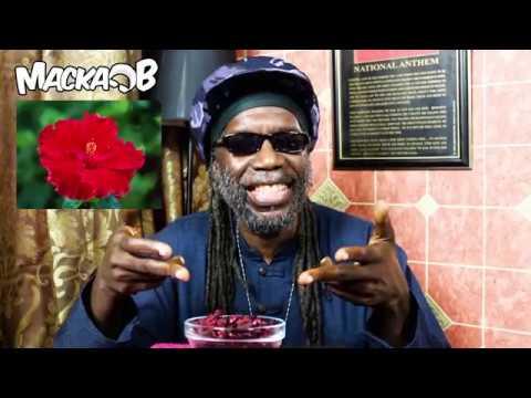 Medical Monday 'Hibiscus aka Sorrel/Roselle/Rosella/Bissap/Sobolo/Jamaica/Wonjo/Zobo' 17/7/2017