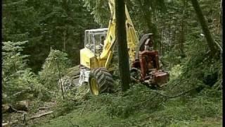 Durchforstung im Steilhang - Thinning works on steep slope Menzi Muck Harvester A71
