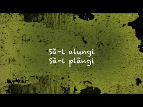 SPAM - Nu știu să plâng (Lyric Video)