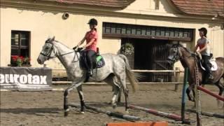 Obóz jeździecki  Brody 2014 - II turnus.