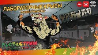 Escape From Tarkov ▷ #025 Лабораторные крысы (Чат в Твиче)
