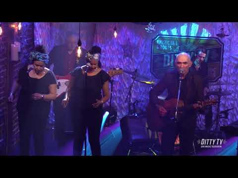 "Paul Kelly performs ""Letter in the Rain"" on DittyTV"