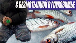 Безмотылка в глухозимье Плотва на сырный кубик Зимняя рыбалка 2021