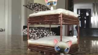 Littlest Pet Shop: Making A Lps Bunk Bed