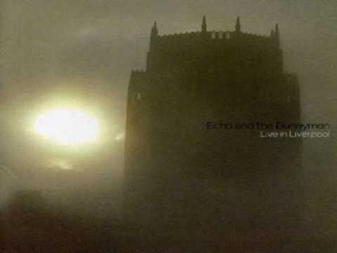 Echo And The Bunnymen - My Kingdom (Live) mp3