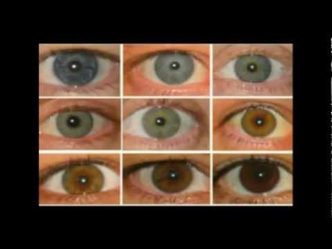 Chart Of Natural Eye Colors