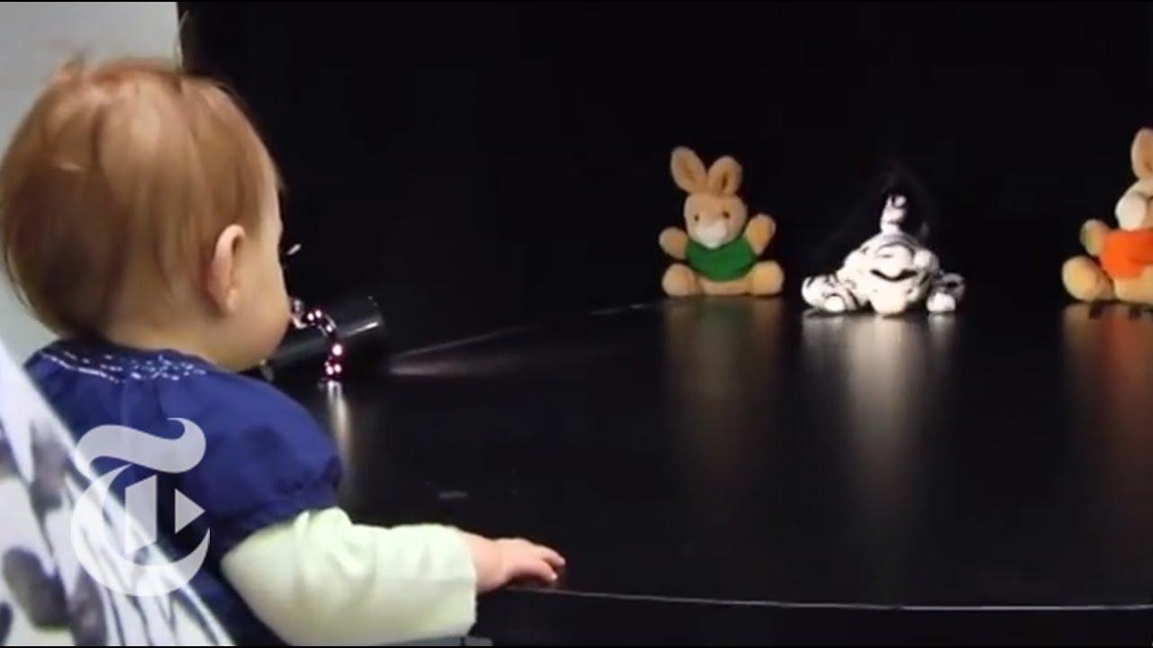 puppet experiment baby ile ilgili görsel sonucu