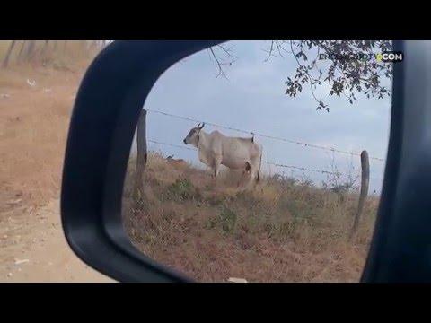 Viajando por Cesar, Colombia