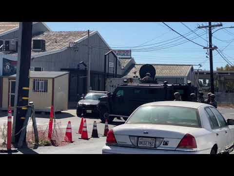 Alameda County Sheriff's Department Serving Search Warrant on Cannabis Growhouse by Derrick Soo