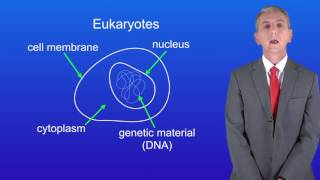 GCSE Science Biology (9-1) Eukaryotes and Prokaryotes
