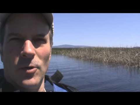 Klamath National Wildlife Refuge - Limjack