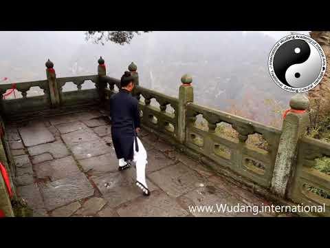 Wudang Tai He Quan in the Mountain Peaks