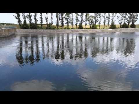 ловля сома на каховском магистральном канале