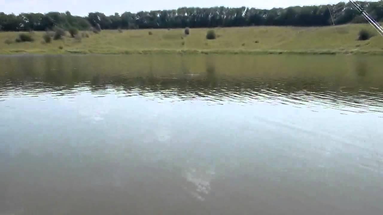 видео ловля толстолоба с лодки