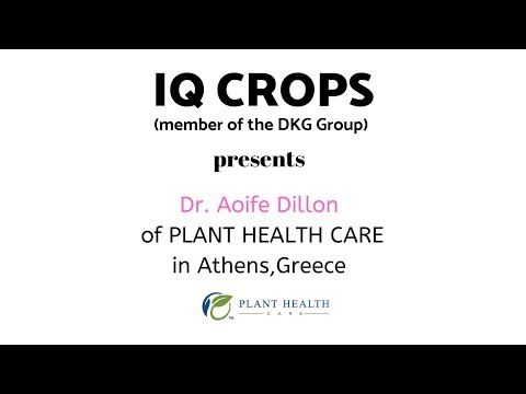IQ CROPS Presents Dr Aoife Dillor Of Plant Health Care In Athens