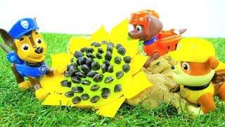 Paw Patrol nuovi episodi. Giochi per bambini con giocattoli