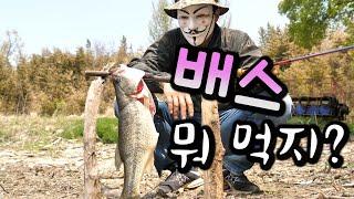 배스 잡아서 샌드위치 먹방(feat. 봇대 4층석탑) …