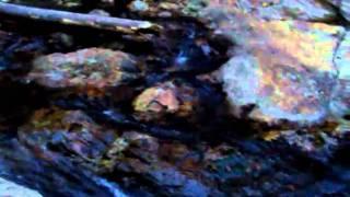 Video Cascada en Agua Blanca Hidalgo, cerca del Centro Turistico de Agua Linda download MP3, 3GP, MP4, WEBM, AVI, FLV Oktober 2018