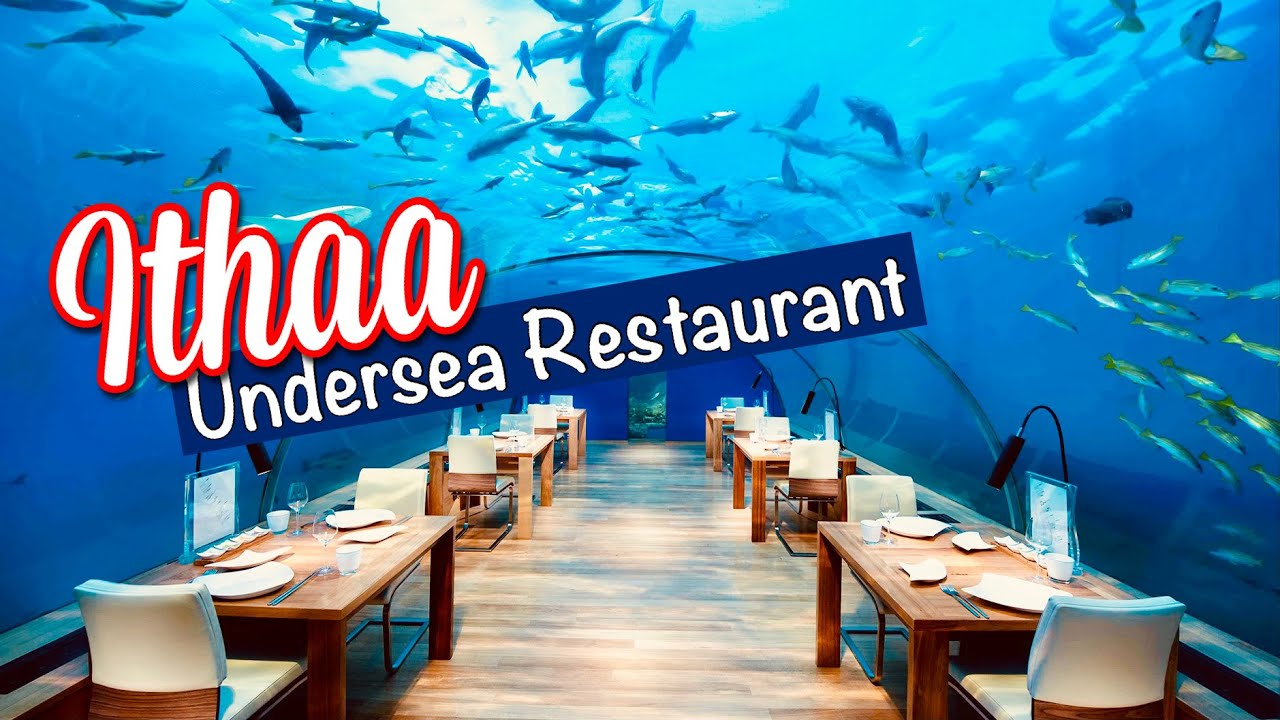 Ithaa Undersea Restaurant Youtube