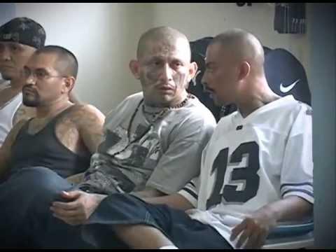 Reportaje especial - Tregua entre pandillas