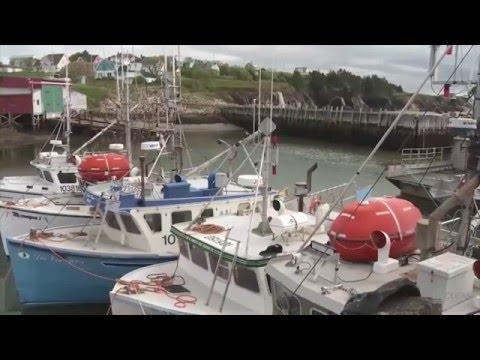 Services pré-arrivée en immigration économique - Nouvelle-Écosse (Canada)