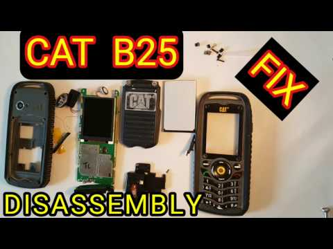 CAT B25 DISASSEMBLY, REPAIR