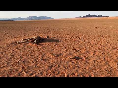 Namib Rand Nature Reserve, Namibia
