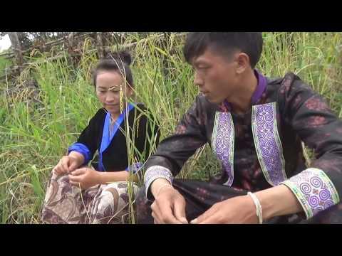 Hmong new movie txiv tshiab kav ntxhais heev li heev