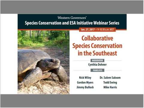 Webinar: Collaborative Species Conservation In The Southeast